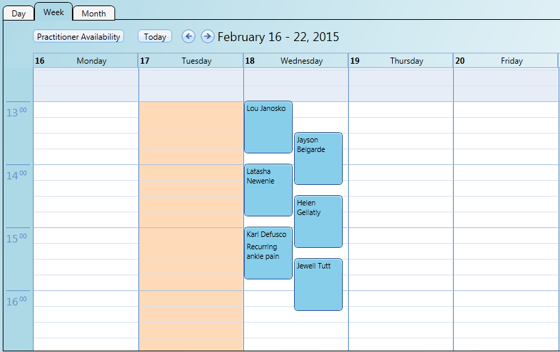 Multiple simultaneous bookings appear stacked in the practitioner's calendar